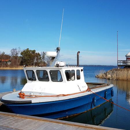 Trädgårdsbåten Calypso